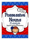 Possessive Nouns - Using Apostrophes FREEBIE