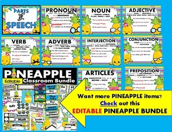Parts of Speech Poster Pineapple Theme 50% off 24 hours