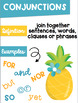 Parts of Speech Anchor Chart Posters ~Flamingo Pineapple Tropical Theme~