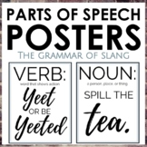 Parts of Speech Posters Using Millennial Slang
