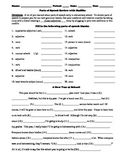 Parts of Speech Review with Madlibs