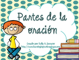 Parts of Speech Posters in Spanish PLUS PPT / Partes de la oración