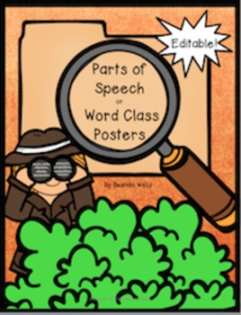 Parts of Speech or Word Class Posters