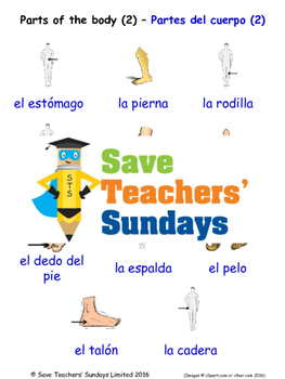 Parts of The Body in Spanish Worksheets, Games, Activities and Flash Cards (2)