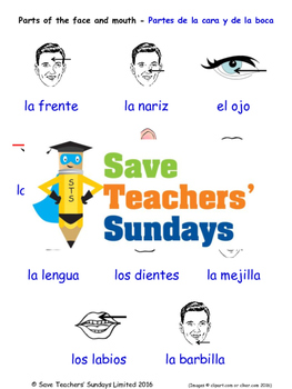 Parts of The Face in Spanish Worksheets, Games, Activities and Flash Cards
