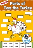 Freebie! Parts of Tom the Turkey (Thanksgiving Activities)