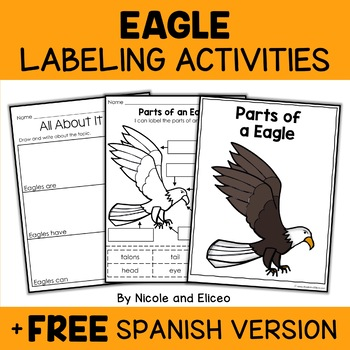 Vocabulary Activity - Parts of a Bald Eagle