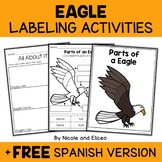 Parts of a Bald Eagle Activities