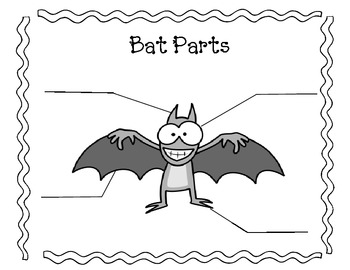 Parts of a Bat