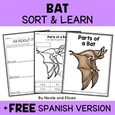 Parts of a Bat Activities