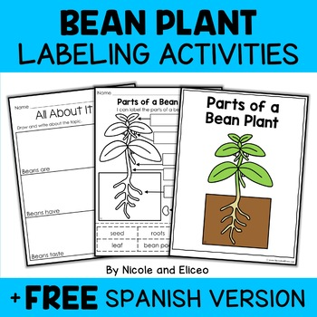 Vocabulary Activity - Parts of a Bean Plant
