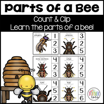 Parts of a Bee Count and Clip