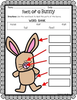 Parts of a Bunny