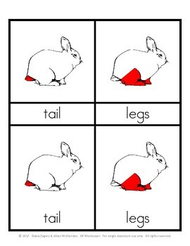Parts of a Bunny - Montessori 3 part cards