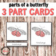 Parts of a Butterfly 3 Part Cards for Hands-on Activities