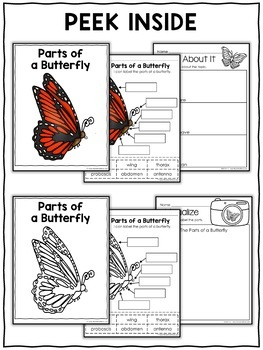 Vocabulary Activity - Parts of a Monarch Butterfly