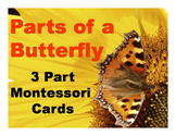 Parts of a Butterfly Montessori Three Part Vocabulary Card