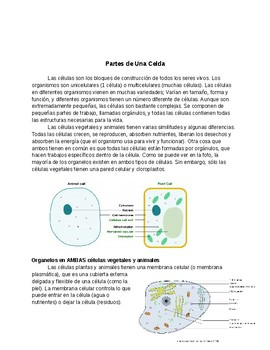 Parts of a Cell Reading (English, Spanish, and Arabic)