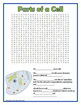Parts of a Cell Word Search
