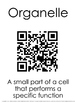 Parts of a Cell and Organization QR Activity