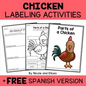 Parts of a Chicken Activities