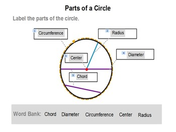 Parts of a Circle 3rd 4th 5th Geometry PowerPoint Lesson