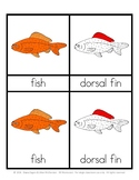 Parts of a Fish - Montessori 3 part cards