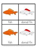 Parts of a Fish - Montessori 3 part cards