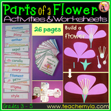 Parts of a Flower Activities -Worksheets -Flash Cards -Cra