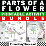 Parts of a Flower Craft Diagram, Science Interactive Notebooks for Plants Unit