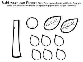 Parts of a Flower FREEBIE