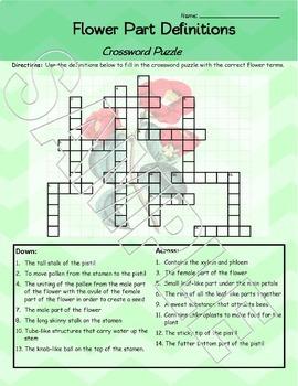 Parts of a Flower Crossword Puzzle Worksheet FREEBIE!