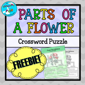 Parts of a Flower Crossword Puzzle Worksheet FREEBIE!