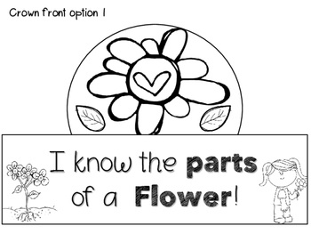 Parts of a Flower Crown ~ FREEBIE!