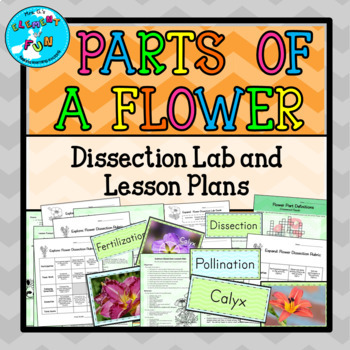 Parts of a Flower Dissection Lab Lesson Plans and Handouts