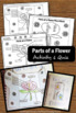 Foldable Parts of a Flower Labels, Science Interactive Notebook, Summer Unit