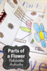 Parts of a Flower Diagram 5th Grade Plants Interactive Notebook