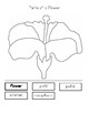 Parts of a Flower Labeling Worksheet by My Montessori ...