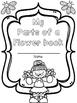 Parts of a Flower Mini Fun Packet ~ NO PREP