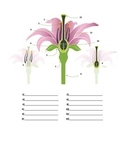 Parts of a Flower Quiz or Worksheet