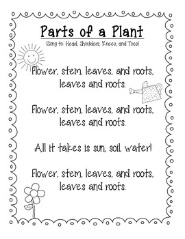 Parts of a Flower Song (Sung to Head, Shoulders, Knees, and Toes) FREEBIE!
