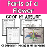 Parts of a Flower Vocabulary Review Color by Answer