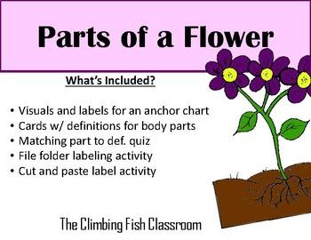 Parts of a Flower a Mini Unit