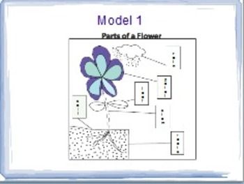 No-Print Lesson: Parts of a Flowering Plant - Expository Writing 1