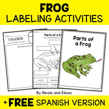 Parts of a Frog Activity