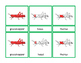 Parts of a Grasshopper Montessori Three Part Vocabulary Ca