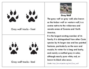 Parts of a  Gray wolf Three Part Cards