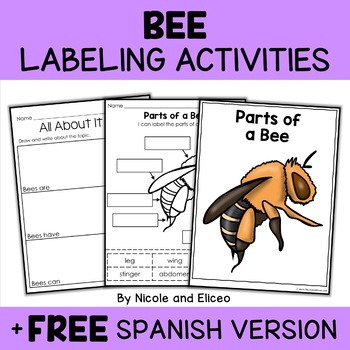 Vocabulary Activity - Parts of a Honey Bee