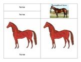 Parts of a Horse - Montessori-Three Part Cards
