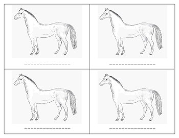 Parts of a Horse - Montessori-Three Part Cards